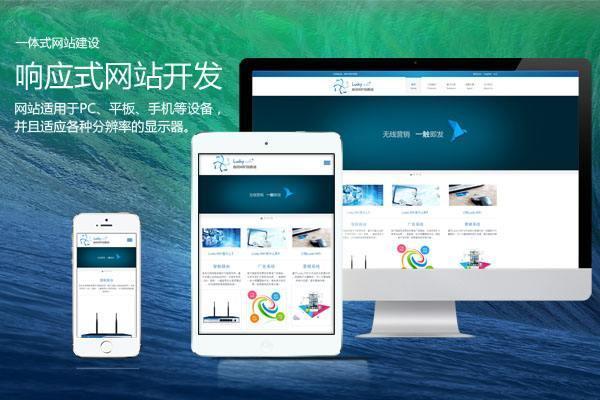 行业型网站设计